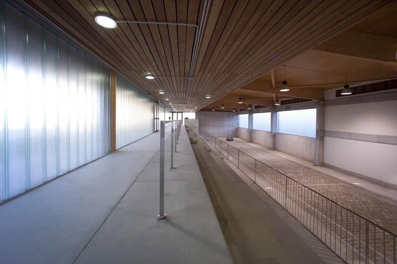 Polideportivo de madera laminada